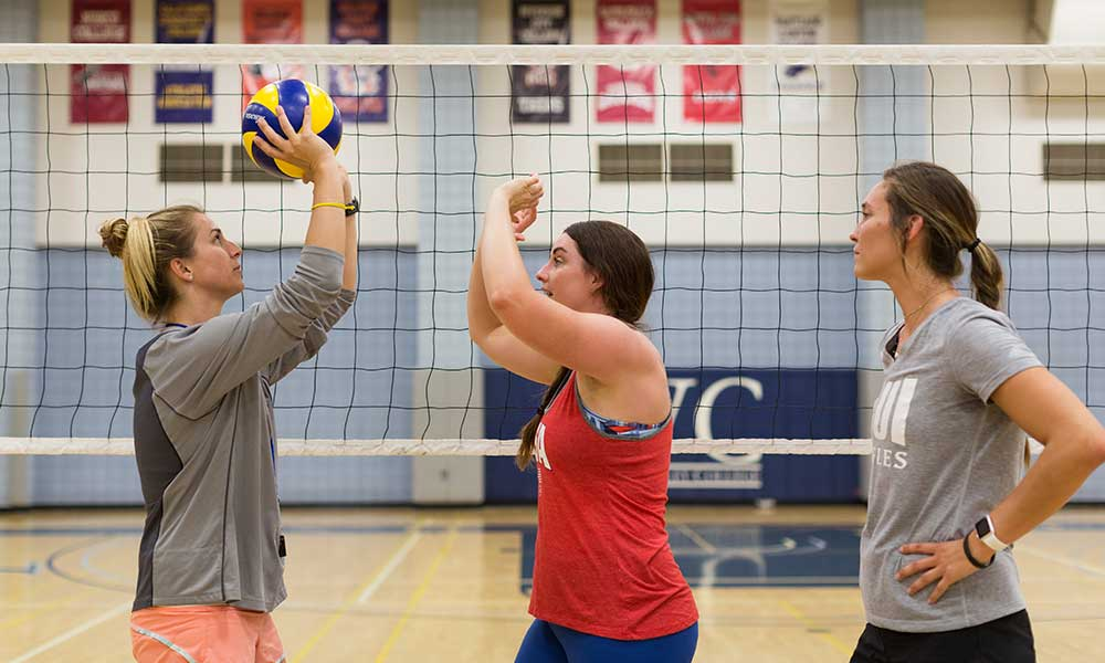 Volleyball coach working with other coaches