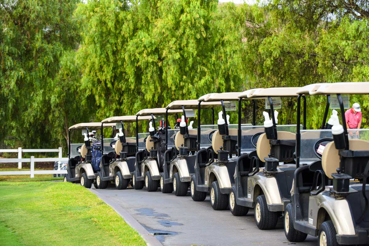 Golf carts lined up on a walk